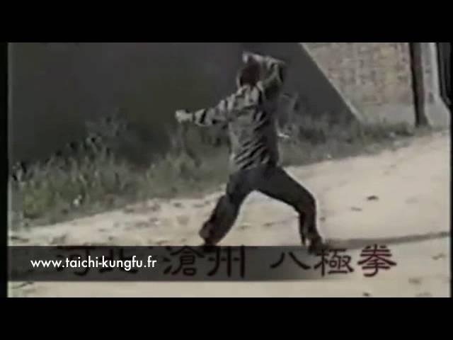 Ba Ji Quan - Kungfu style \