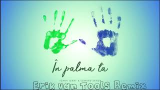 Ioana Ignat X Edward Sanda - In Palma Ta (Erik van Tools Remix)