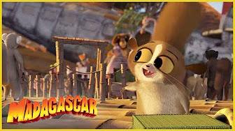 Madagascar Todos Los Videos Pelicula Completa Espanol Latino