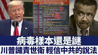 川普:美國將調查世衛 暫停資金|新唐人亞太電視|20200416