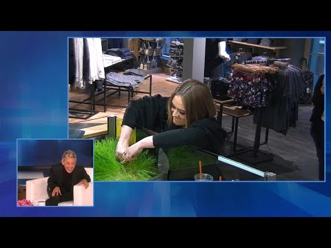 Ellen Looks Back at Her Favorite LOL Moments
