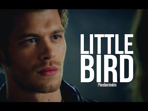 Download Little Bird ➤ Klaus Mikaelson // Wattpad Trailer