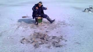 Зимняя рыбалка на льду озера Ильмень.