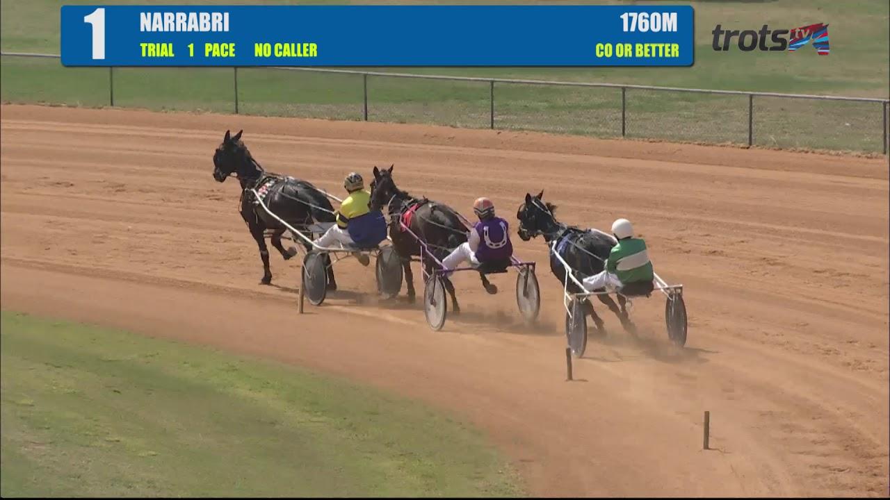 watch 21aa3 baa4f Trial] PACE | Harness Racing NSW