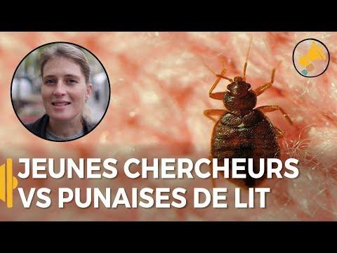 Seul Il A Decide De Nettoyer Alger Redha En Algerie Youtube