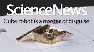Cube robot is a master of disguise | Science News
