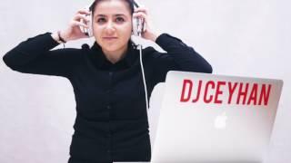 DJ Ceyhan - Anadolu Halay 2017