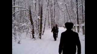 Сбивание снега с дерева