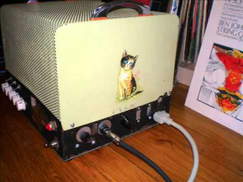 Super Clean Amp w/ Dumble Tone Stack