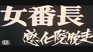 京都にある特別教護施設の私立XX学院から脱走して捕まった青木るり子...