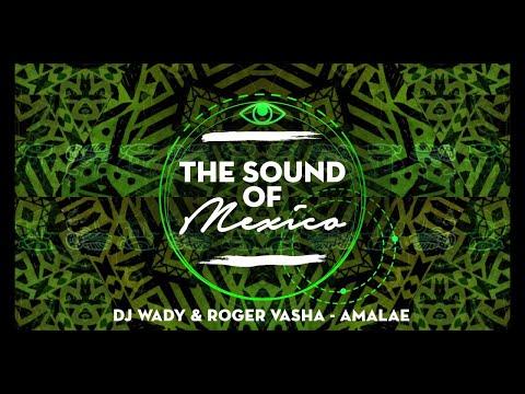 DJ Wady & Roger Vasha - Amale