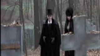 Elvira Haunted Hills