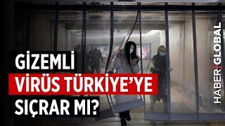 Gizemli Virüs Türkiye'ye Sıçrar Mı? Corona Virüsü Nedir?