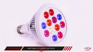 Best Led Grow Light 2018? Best Led Grow Light For The Money