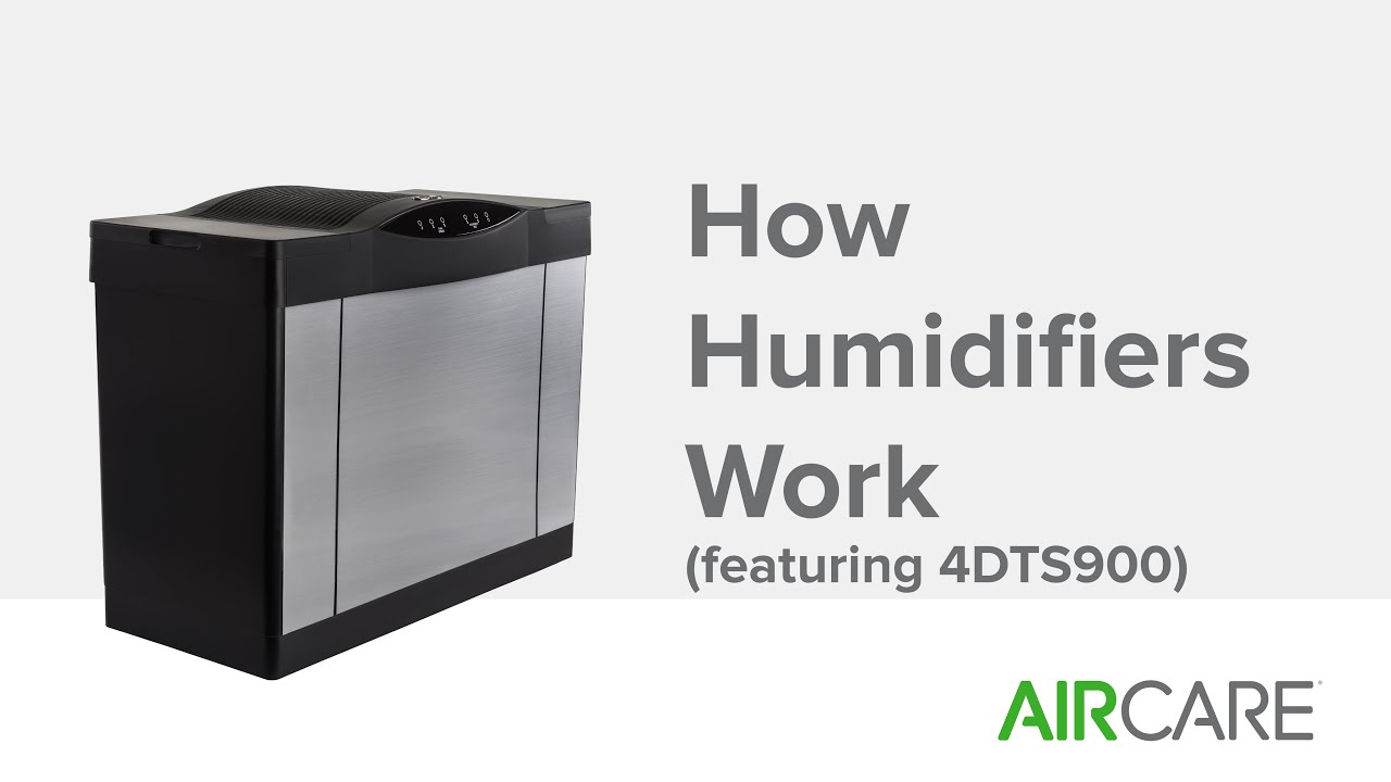 How Humidifiers Work (featuring 4DTS900)   #25A611