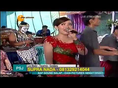 STELL KENDO Voc Levi SUPRA NADA Live Blader Tegalrejo 2017