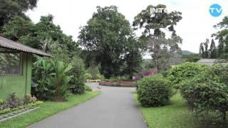 Шри Ланка 2013 туризм и отдых(, 2013-03-29T18:38:10.000Z)
