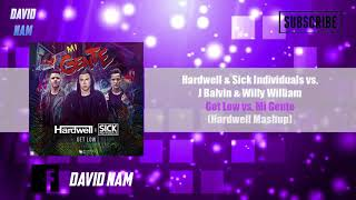 Get Low Vs Mi Gente Hardwell Mashup David Nam Remake
