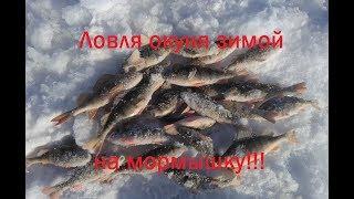 Ловля окуня зимой на мормышку. Зимняя рыбалка 2018.