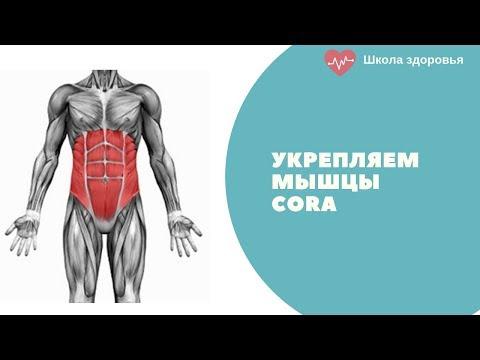 Укрепление мышц КОРА
