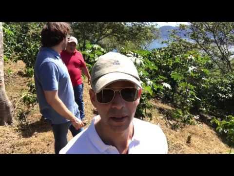 Rodner Figueroa y Ernesto te invitan a conocer el café a conocer el café de El Salvador