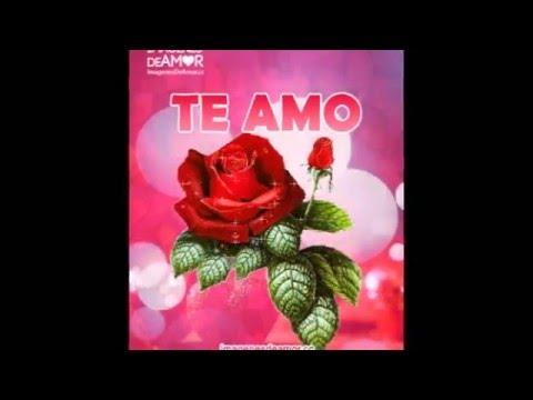 Imagenes De Rosas Rojas Con Frases Te Amo Y Me Gustas Youtube