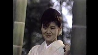 南野陽子 「悲しみモニュメント」