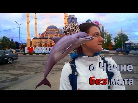 Что творится на улицах Грозного? Видео из Чечни, 2016 год