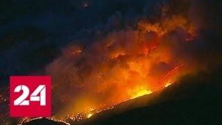 Число жертв лесных пожаров в Калифорнии увеличилось до 58 - Россия 24