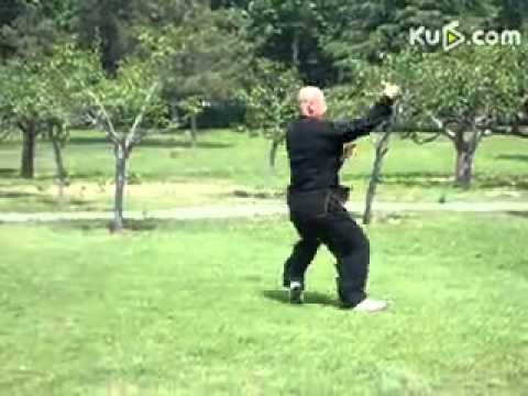 Qingdao Laoshan Master - Seven Star Praying Mantis Form - 1