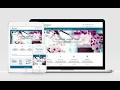 Panoramic Free WordPress Theme Download Link