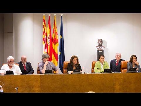 Ple extraordinari de la Diputació de Barcelona