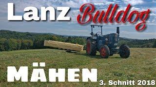 Lanz Bulldog Mähen - 3. Schnitt 2018 [D6516]