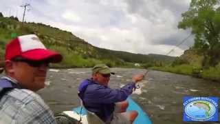 Fly Fishing on the Eagle River in Colorado 2015