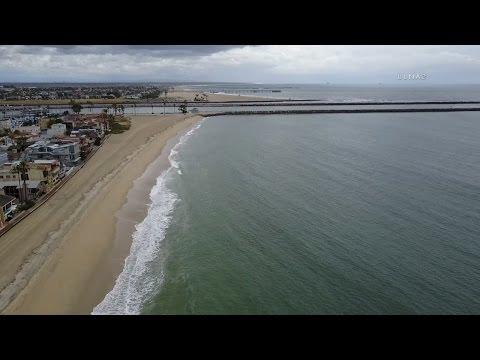 Shark Warning / Long Beach   RAW FOOTAGE