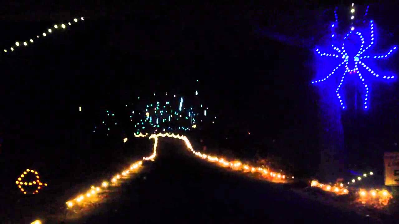 2012 Norfolk Va botanical gardens holiday light show with Curtis and ...