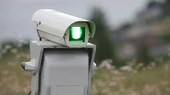 Bird control: Silent laser may scare birds without troubling neighbors