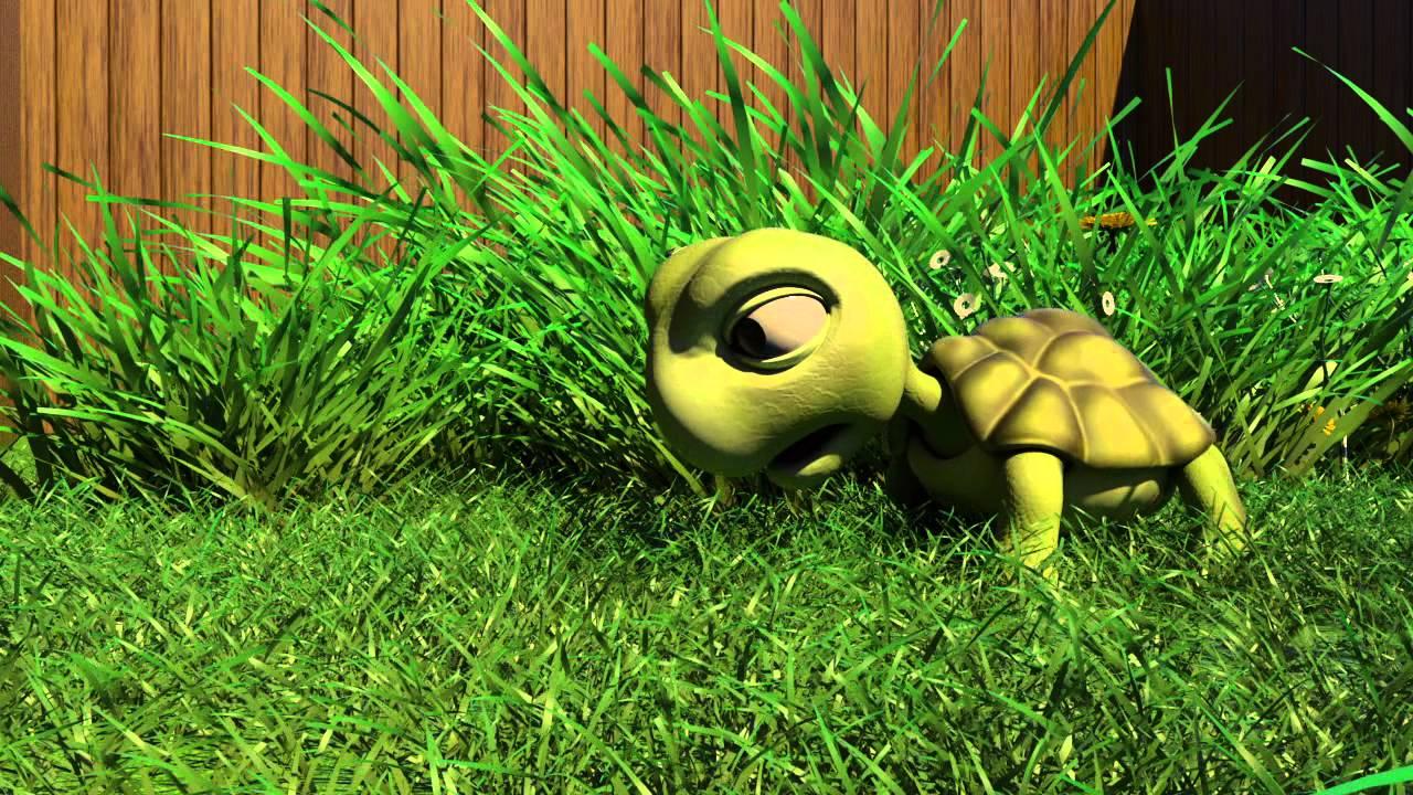 Turtle Animation - YouTube