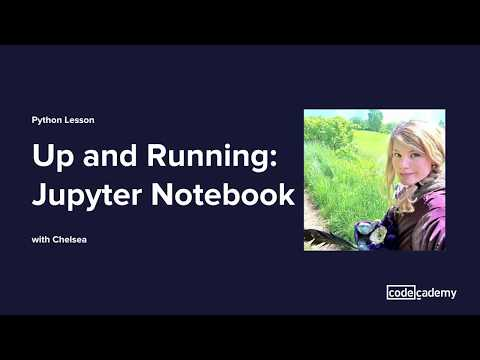How To Use Jupyter Notebooks | Codecademy