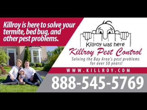 Pest Control Tracy CA | Exterminators | Killroy