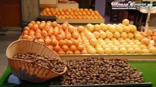 Помело фрукт - полезные свойства