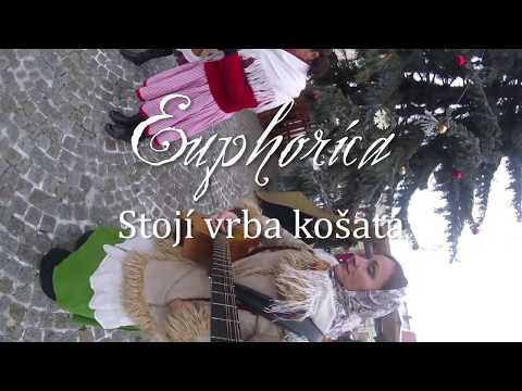Euphorica -  Stoji vrba košatá - koleda