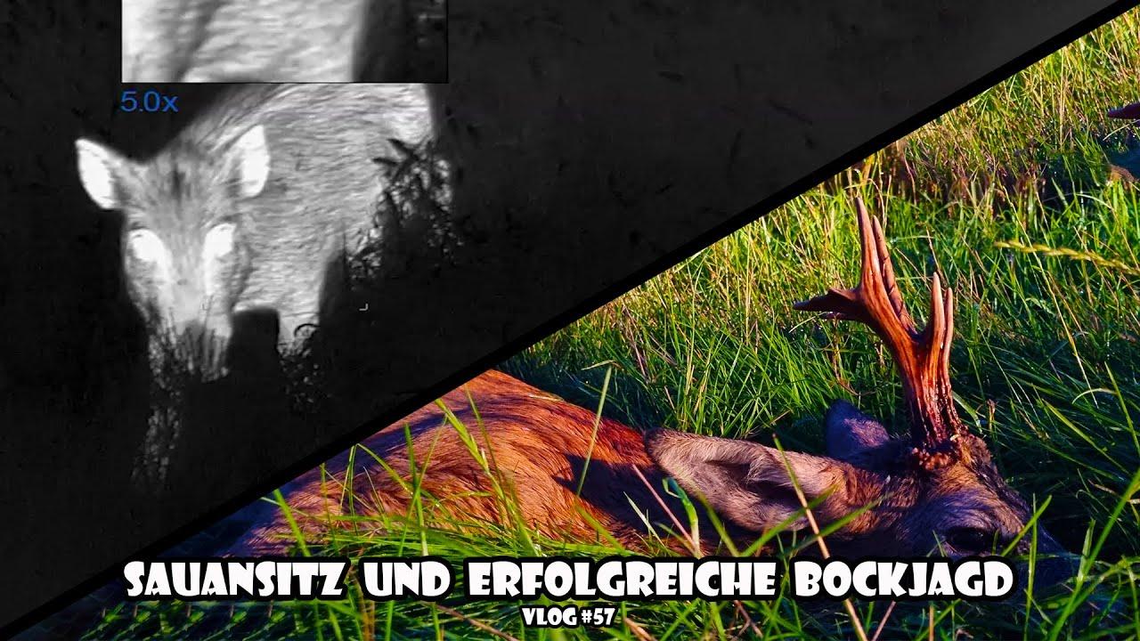 Download Sauansitz und erfolgreiche Bockjagd / RevierLeben // Vlog 57