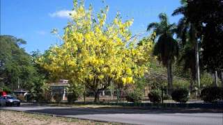 Easter In Trinidad- Lord Kitchener
