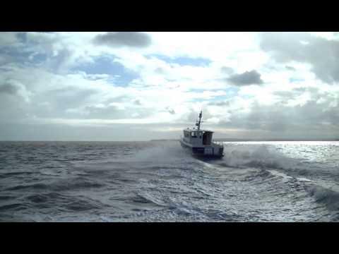 Invicta 295 Sea Run