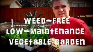 How to Have a Weed Free Organic Vegetable Garden: Weed Fabric