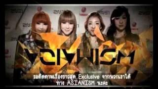 "2NE1 - ASIANISM ""Exclusive ID's"" (Nov 2010)"
