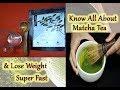 Rapid Weight & Inch Loss With Matcha Tea/Detail Information Of Matcha Tea/How To Make Matcha Tea