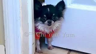 """""""Powder Room"""" - Chi Yum Yum"""