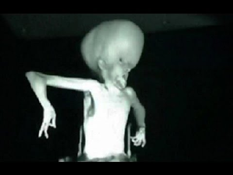 Ayy Lmao Video Gallery Know Your Meme